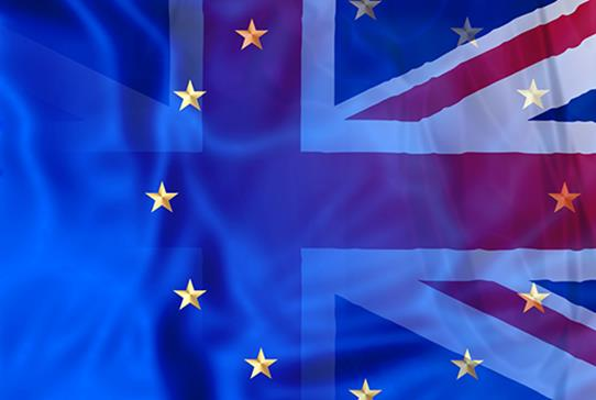RCSEd Urges Government to give EU Staff Reassurance - Read more