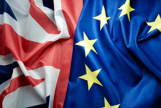 RCSEd Urges Membership to Support Key Brexit Healthcare Priorities  - Read more