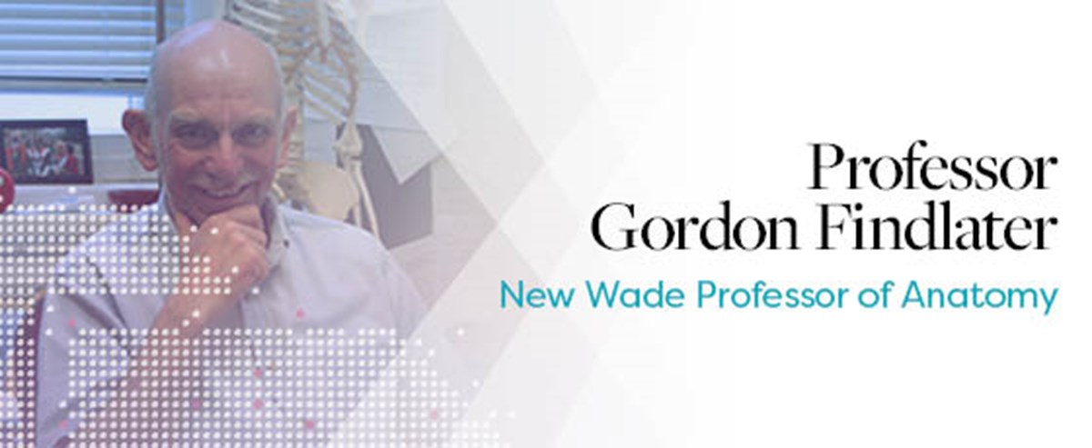 Professor Gordon Findlater Appointed As Wade Professor Of Anatomy